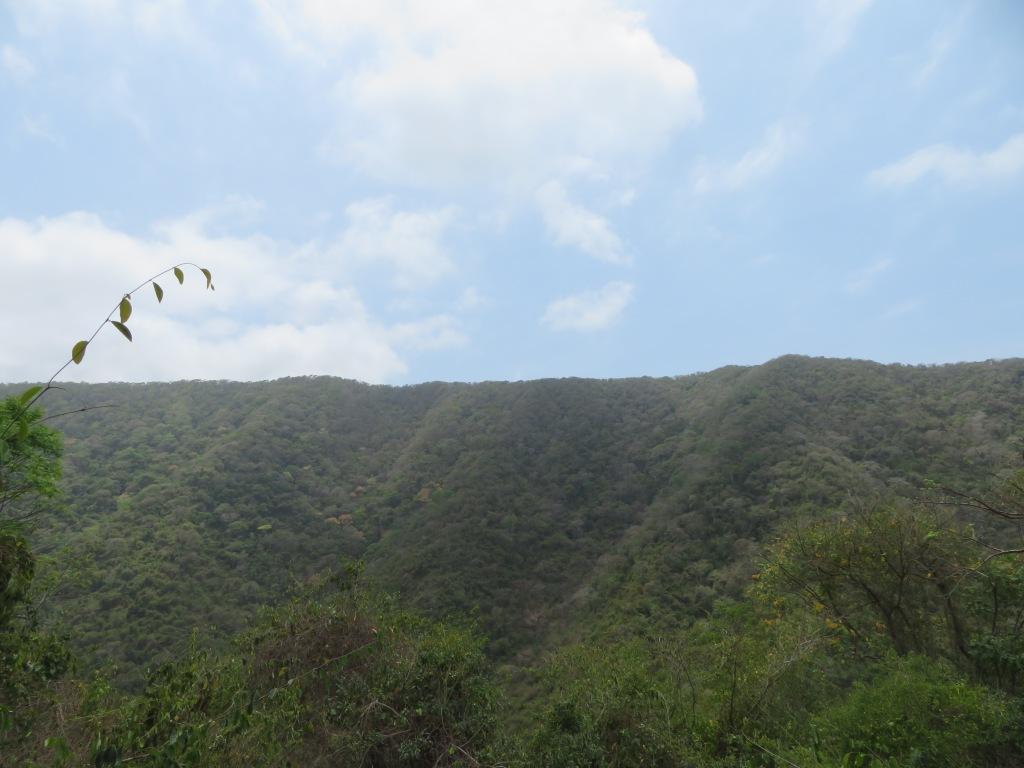 Ridge along the trail from Calabazo to Playa Brava